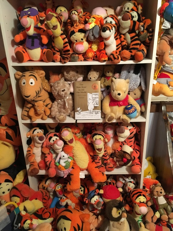 Shelf of stuffed Tiggers part of Deb Hoffmann Guinness World Record Holder of Largest Winnie the Pooh Memorabilia collection